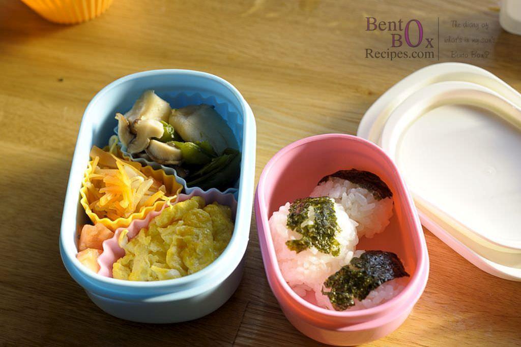 2013-feb-26_DAG8284_bento_box_recipes